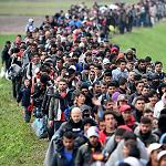 Nå må alle grunnløse asylsøkere sendes hjem!