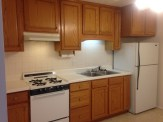 Kitchen with Vented Range Hood