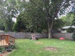 Backyard Fenced