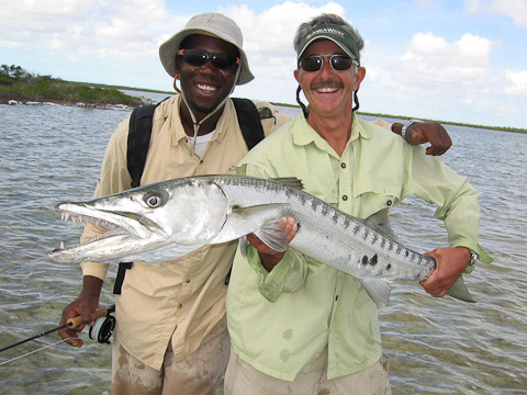 Barracuda On Fly