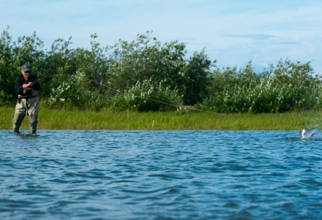 Fly Fishing Web Directory