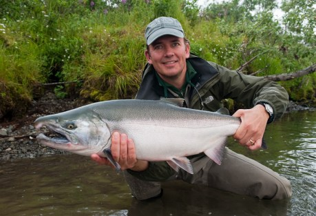 This is not the first silver salmon to eat a fly. Photo: Cameron Miller
