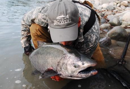 Man, meet salmon.  Photo: Alfie King