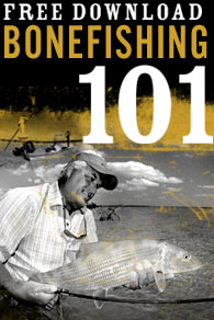 Bonefishing 101