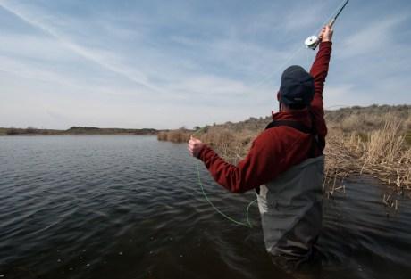 Lakes - Limited Backcast