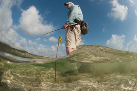 Hunting for Bonefish
