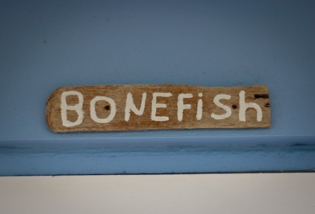 Cheap Bonefishing Trips