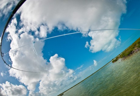 Knotted Fly Line by Louis Cahill Photography