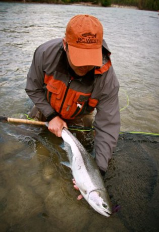 Steelhead Pictures