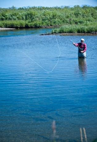 Salmon Feeding in Fresh Water