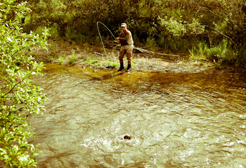 Alaska Fishing Photos