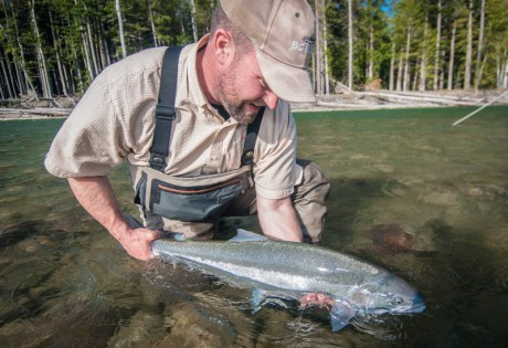 Steelhead - Dean River
