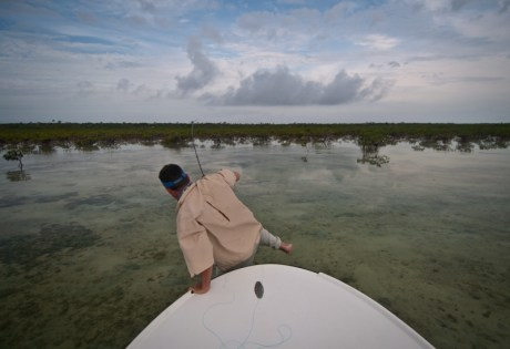 Fighting Bonefish in the Mangroves-1