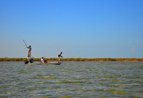 Bonefishing on the Flats