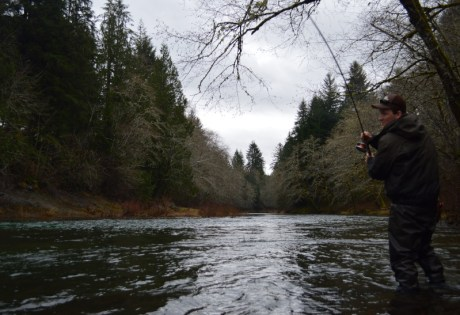 Spey Fishing for Steelhead