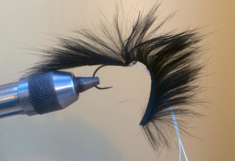 How to tie the Foxy Leech fly pattern.