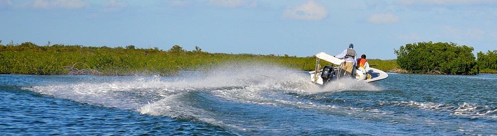 sparklesboat1000x275