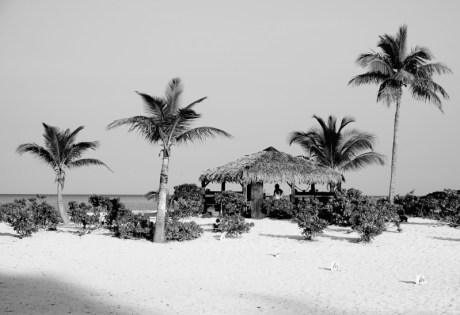 Tiki Hut at Andros South Bonefishing Lodge