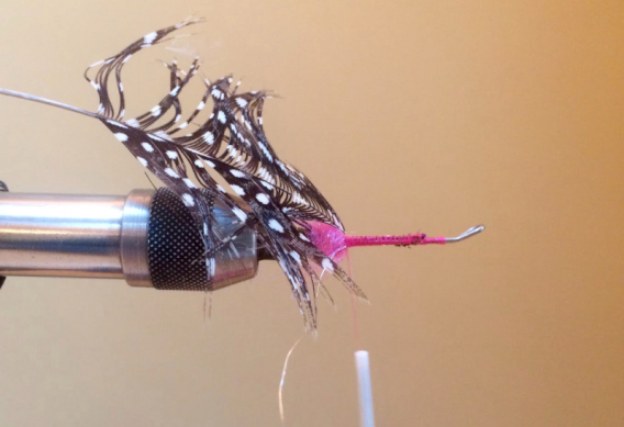How to tie the Hoh Bo Spey Fly for Steelhead