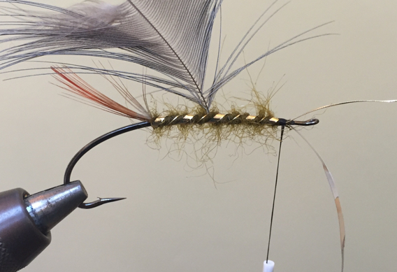 How to tie the Lady Amherst Salmon and Steelhead Fly.