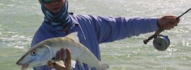Fly fishing for bonefish by Peter Vaiu.