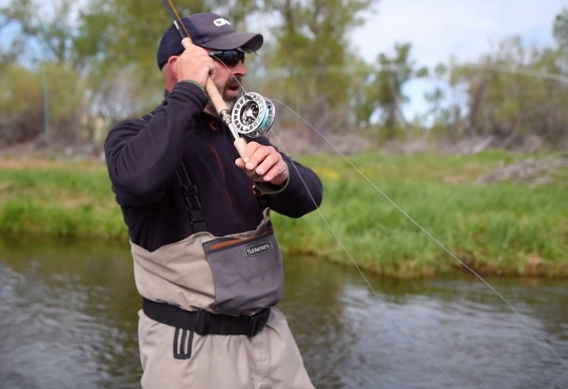 The downstream shoulder perry poke video.