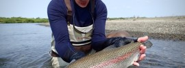 big leopard rainbow trout