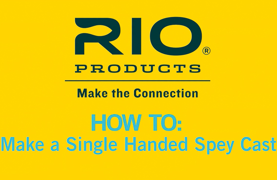 How to make a single hand spey cast video from Rio
