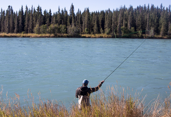 Aerial mending while spey casting