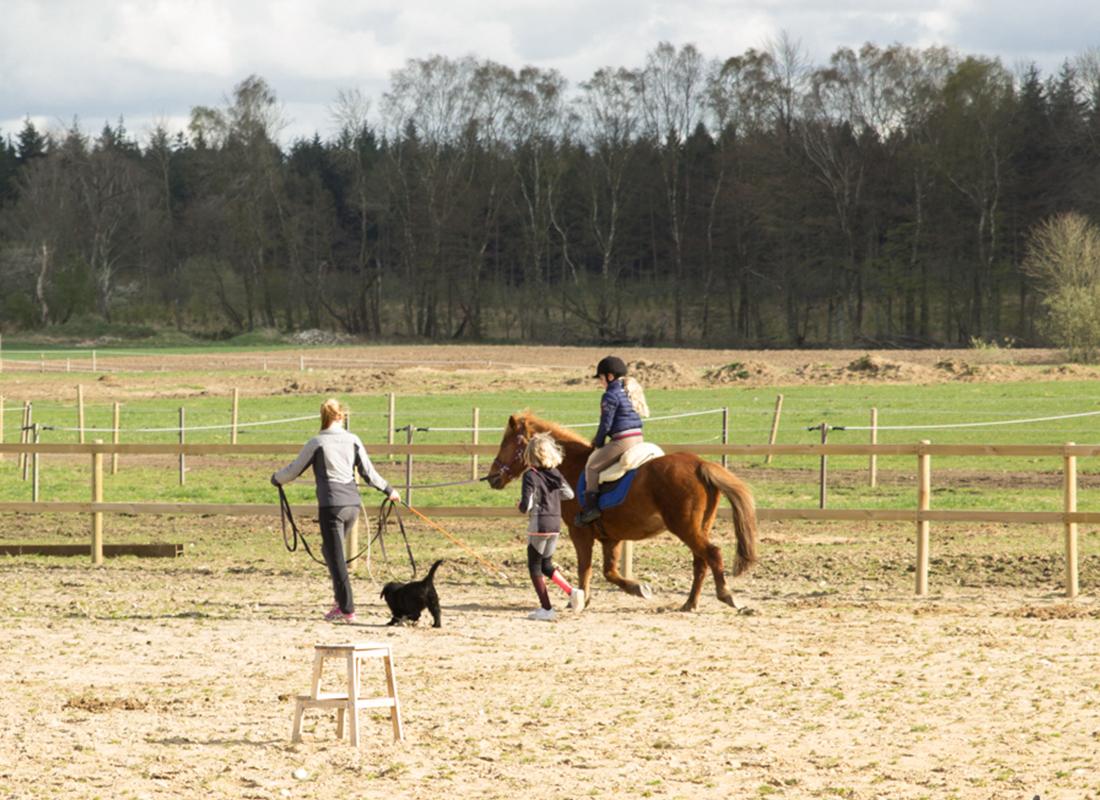 Rideskolen v/Den Hele Ekvipage (Nørager)