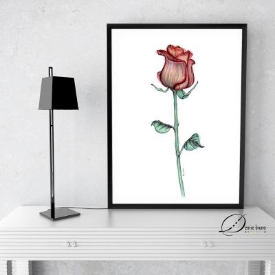 decoracao-poster-rosabeth1