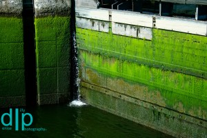 The Ballard Locks, Seattle