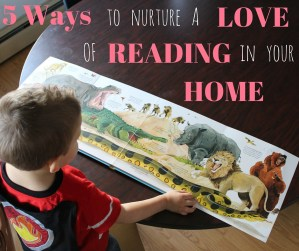5 Ways to Nurture a Love of Reading in Your Home