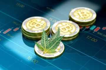 Miner du bitcoin pour faire pousser du cannabis ? 5