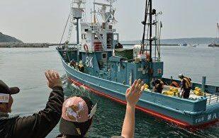 Japonyada Balina Avcılığı