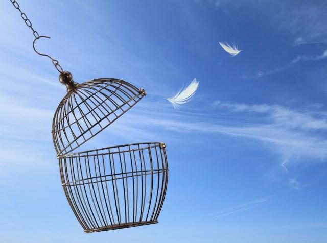 Persönliche Freiheit im Berufsleben ist nicht umsonst – bezahlt wird mit übernommener Verantwortung