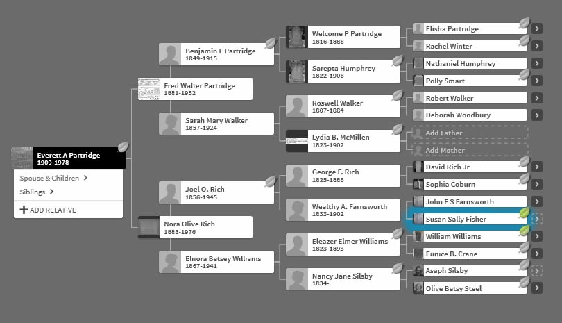 Pedigree showing Sally Fisher from my grandfather Everett Partridge.