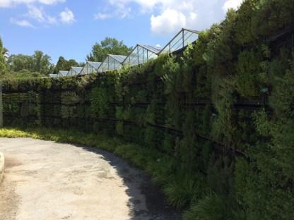 2014-08-31 Atlanta Botanical Garden-13