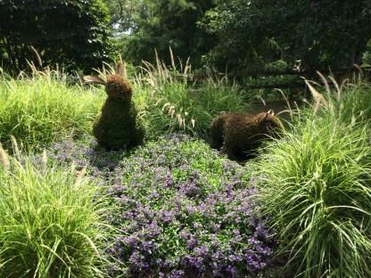 2014-08-31 Atlanta Botanical Garden-26