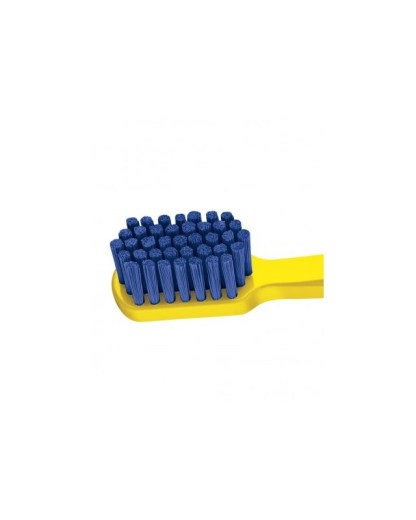 Brosses à dents adultes