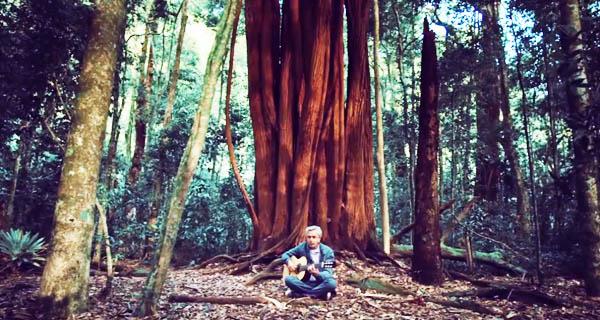 """Caetano Veloso nel video di """"I'm Alive"""""""""""