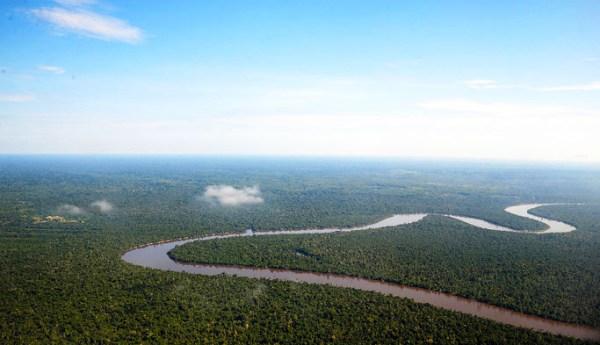 Paesaggio amazzonico