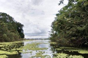 taraipu-viaggio-in-amazzonia-libro-2