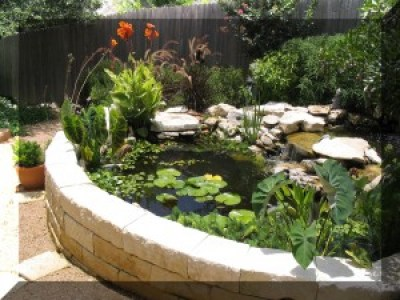 Popular custom water features include beautiful ponds