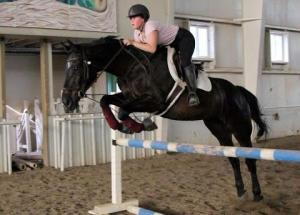 Jumping Horse Quickie