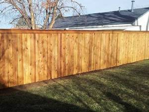 Why Choose Cedar for Building a Fence | A Straight Up Fence Company Denver