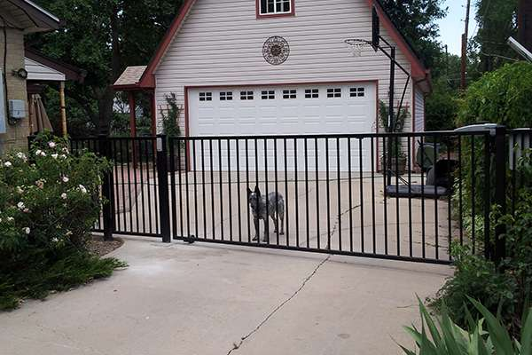 gate and dog A Straight Up Fence Company Denver