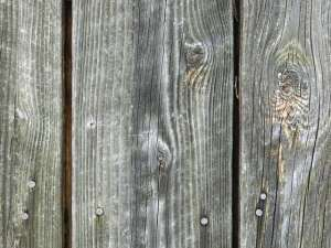How to Bring an Old Fence Back to Life