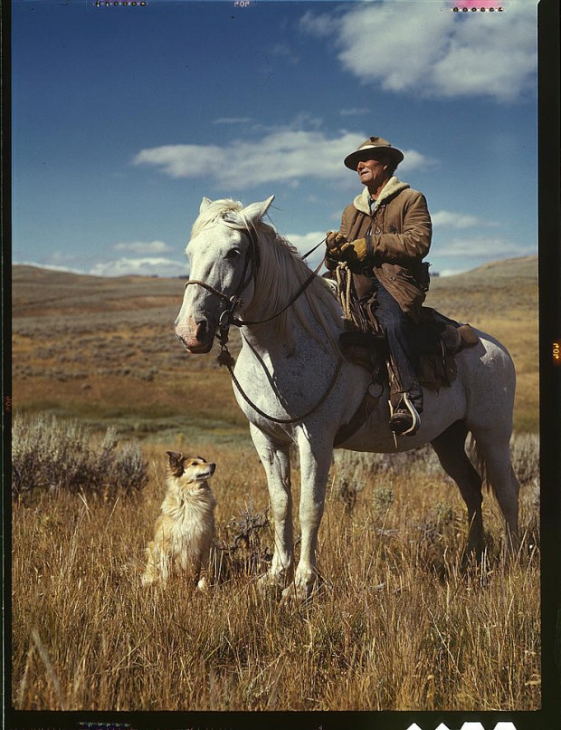 Shepherd with his horse and dog on Gravelly Range Madison County, Montana, August 1942. Reproduction from color slide. Prints and Photographs Division, Library of Congress
