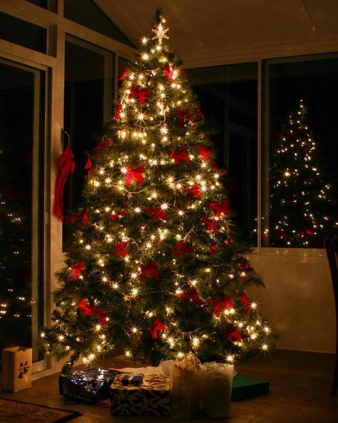 Craigslist post for free artificial tree leads couple to ...